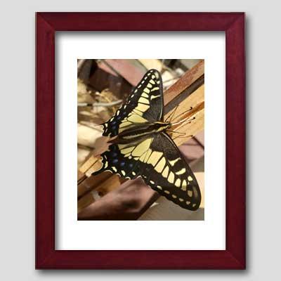 Redimat Wood Picture Frame Kits Profile 2 Mahogany